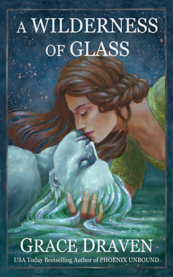 A Wilderness of Glass book cover image